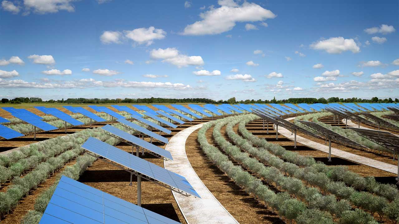 Renderingstudio Parco a concentrazione solare Sardinia Green Island 09